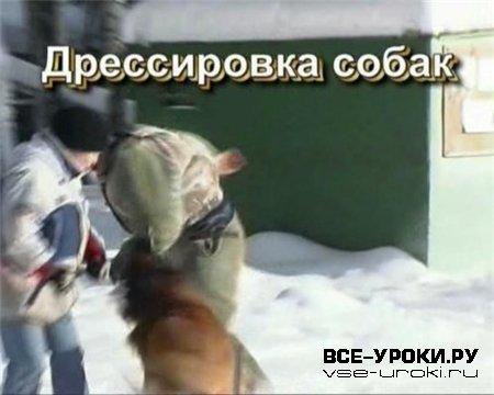 Дрессировка собак (2003) DVDRip