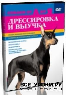 Собаки от А до Я: Дрессировка и выучка (2006) DVDRip