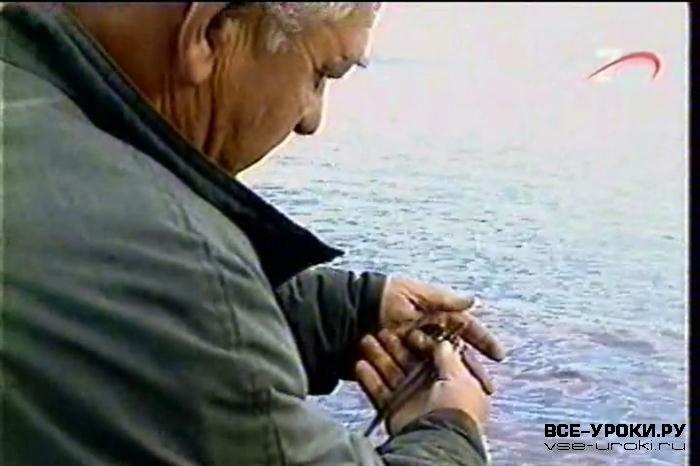 большая отличие повторение получи рыбалку