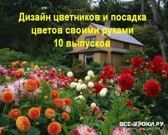 Цветники дизайн, проектирование, ассортимент, сад и огород, койсман татьяна юрьевна, энциклопедии цветовода, дачника